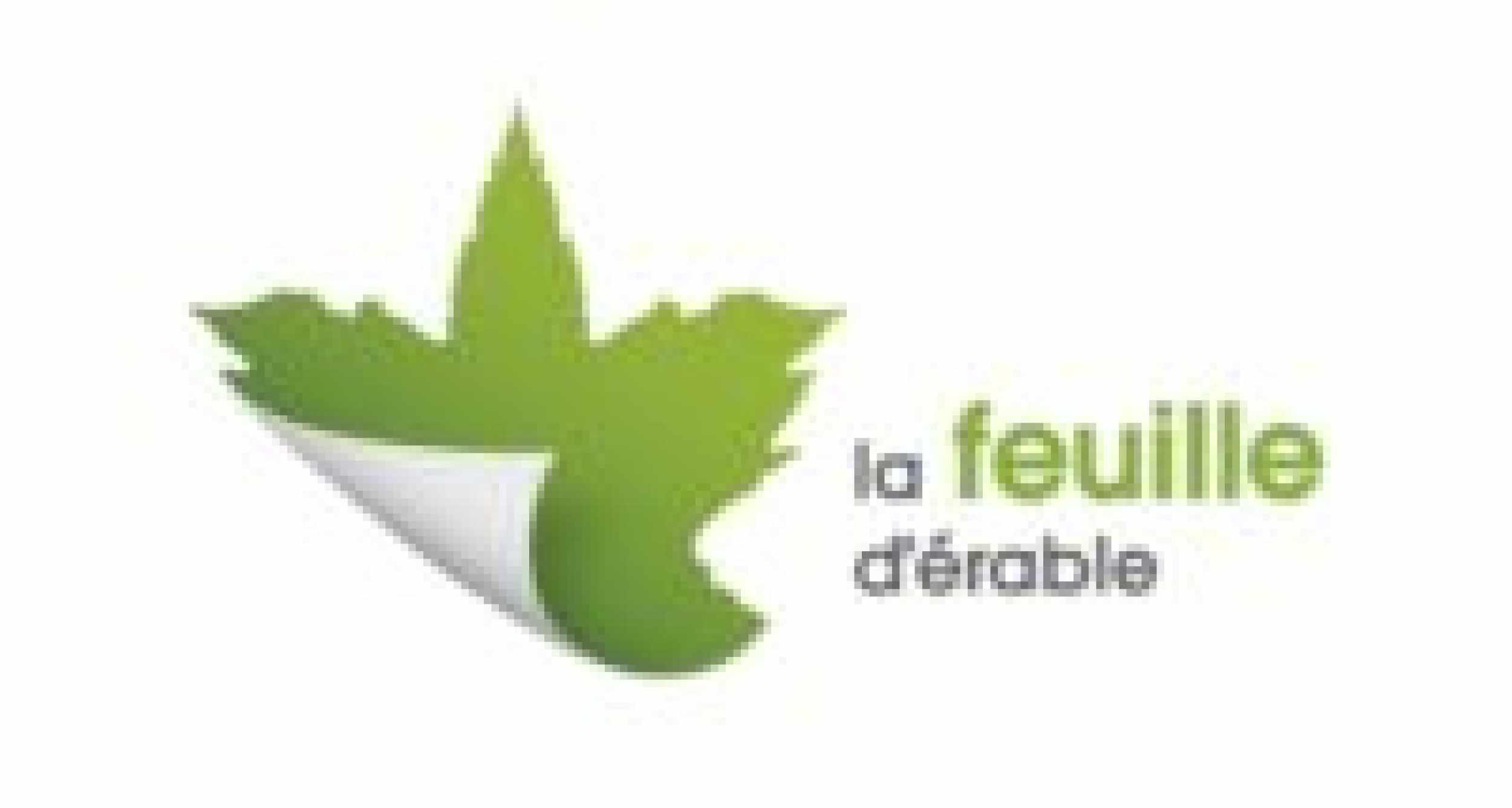 feuille-erable1-e1605699087943